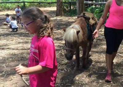 Paseando al pony
